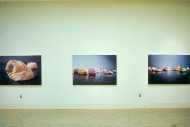 Digital Print installation UVIC 2003