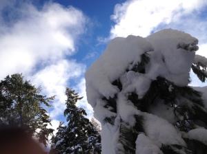 Christmas 2013 and Yoho Lake 329