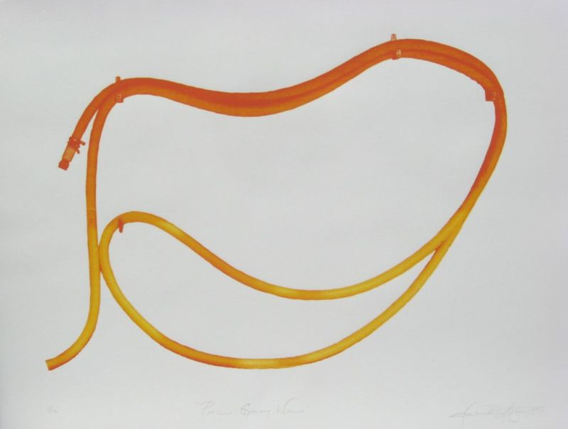 peach gummy worms, silkscreen on paper