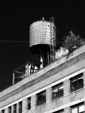 LOVe the watertowers of New York