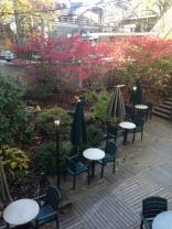 Outdoor garden at the Halliburton.